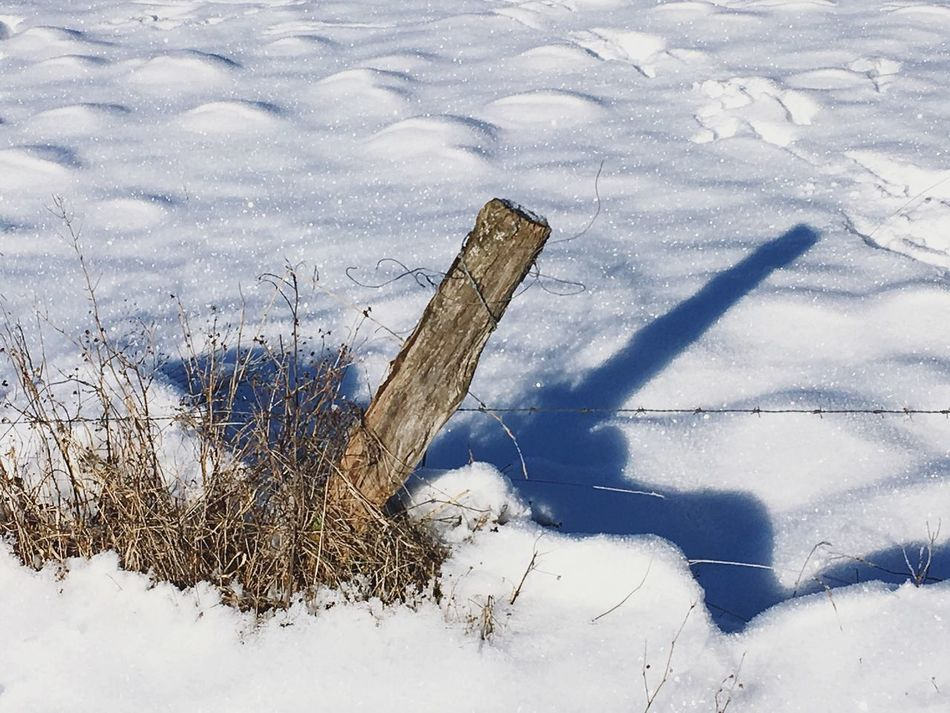 Winter Snow Cold Temperature Weather Nature Outdoors No People Day Beauty In Nature Fence Wood Shadow