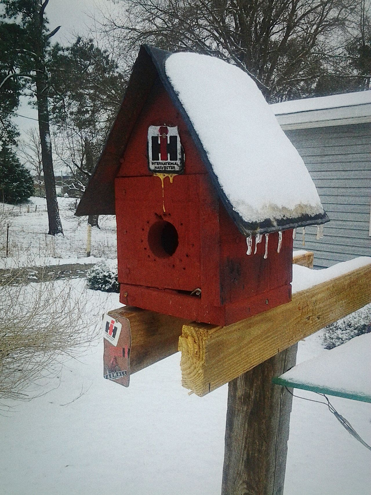 Daddy❤ Birdhouse Winter No People International Harvester