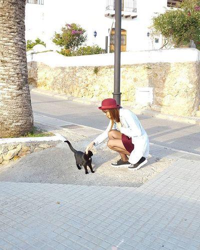 Goodmorning Lovecats Photooftheday Smile Instamoment Realgirls Love Animal Bloggerwoman Catssweet Catcuriosity Ibiza Fashionblog Like4like Outfitoftheday Sundaymorning Nofilter 😚