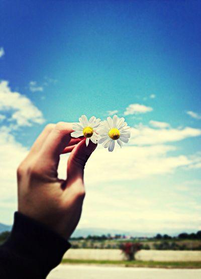 Love Spring Happy