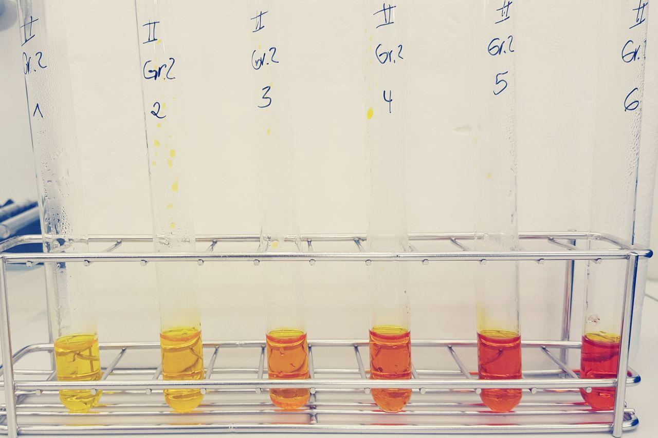 Laboratory Labor Day Labor Reagenzgläser Test Glass Test Tubes Test Tube Test Tube Rack Yellow Orange Colors Colorful Rainbow Yellowtoorange Practice Time  University Biochemistry Biology Physiology  Biochemie Biologie Studying Studium Universität