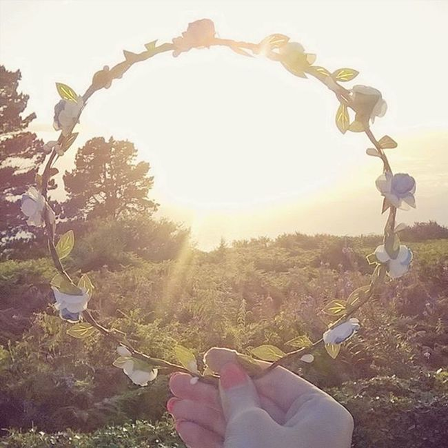 🌸🌞🌸 Summer Sun Flower Flowercrown  Photograpy Bored Food Wales Northwales Sunset Sunnyday Hot Harlech Wales Seaview Sea Blueflowers Roses Sotumblr Orangenails Nails Ihaveweirdhands Trees Fern Plants