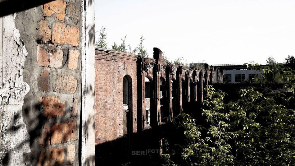 Заброшка Outdoors Day Street Art Architecture Built Structure Sky No People Building Exterior небо сырость Заброшка здание завод серый разрушение