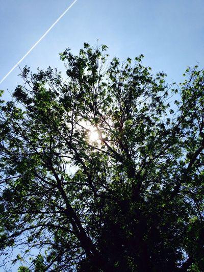 'Le temps d'un instant' Sun Paysage Sky Picture