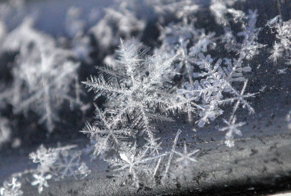 Beautiful stock photos of snowflake, Beauty In Nature, Close-Up, Cold Temperature, Day