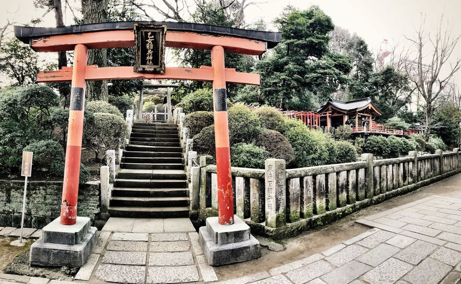 Tree Steps Railing Outdoors Staircase Day No People Steps And Staircases Tranquility Place Of Worship Nature Entrance Entry Tokyo Streetphotography Japan Photography EyeEmJapan Shotoniphone7 IPhoneography Shrine Of Japan Shrines & Temples Place Of Worship