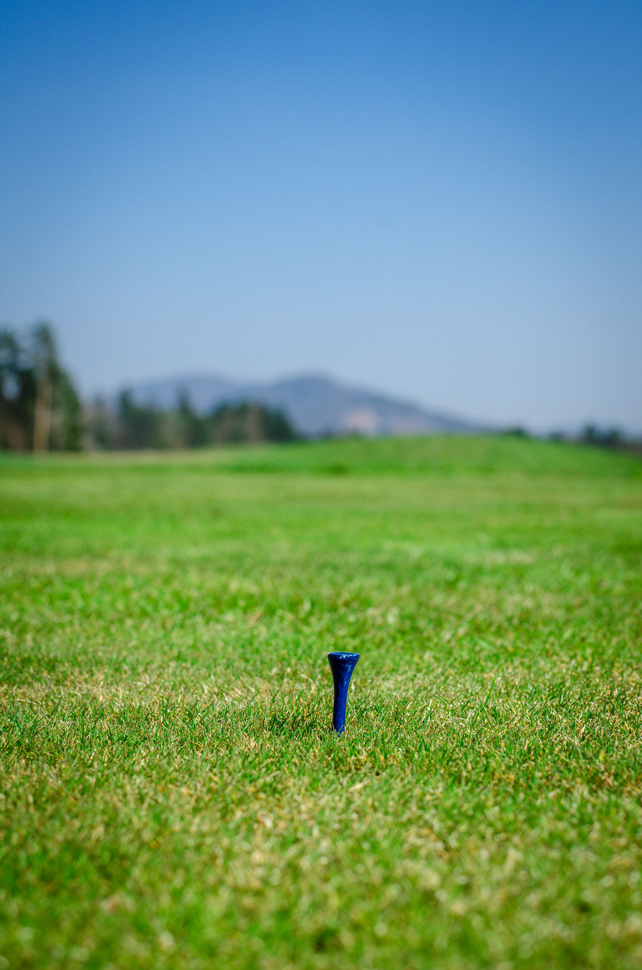 Empty tee on teeing area with green grass ahead and mountains in background. Soft focus or shallow depth of field. Ball Beauty In Nature Blue Club Day Field Golf Golf Ball Golf Club Golf Course Golfer Golfing Grass Grass Green Green Color Growth Landscape Nature No People Outdoors Sky Slovenia Stick Tee