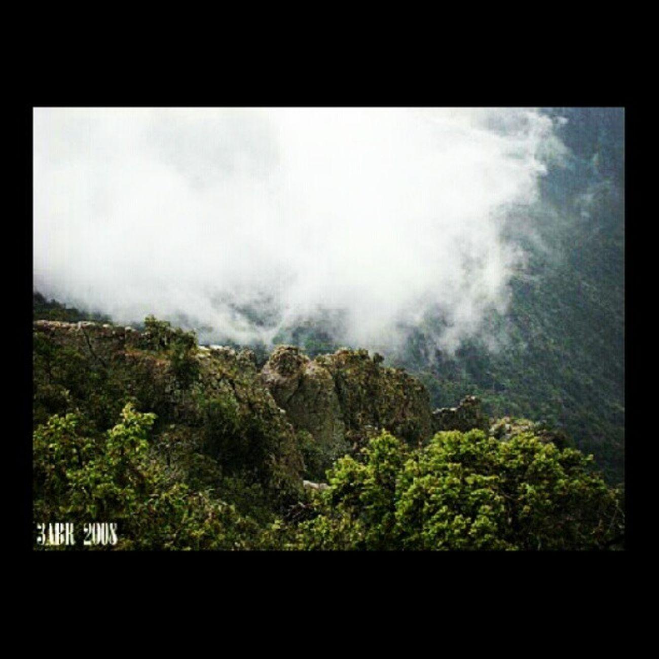 جبال ابها أبها ساب المزن غابة Forest Mountains Abha pull trees