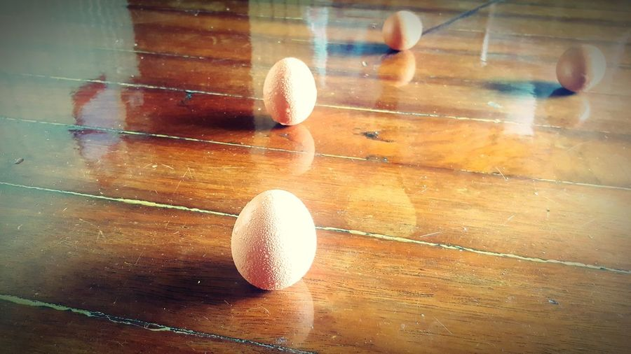 EyeEmNewHere Timber Flooring Eggs Standing Eggs Reflective Floor Surface Sweating Eggs Indoors  Wood - Material No People Close-up Day