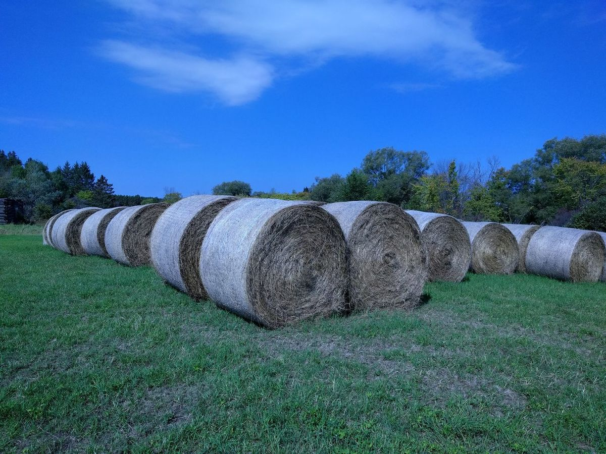 Agriculture No People Hay Bale Nature Day Sky Grass Outdoors Traveling Wakefield Canada Park Forest Travel Destinations Gatineau Park