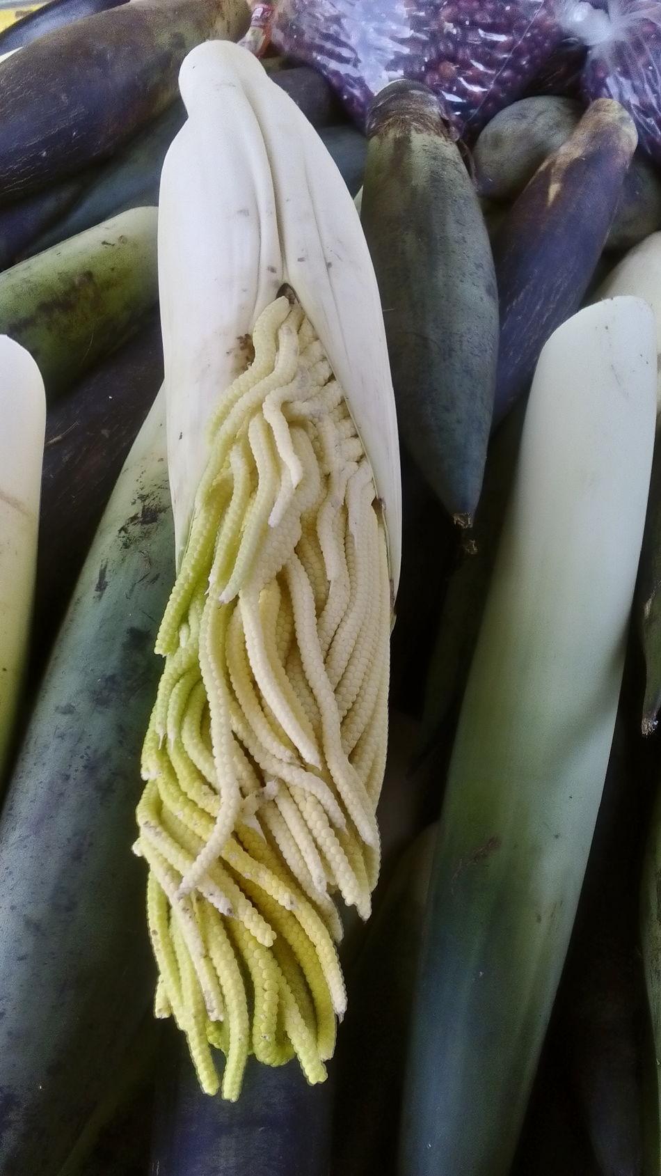 Pacaya Mexico Food Comida Live Love Shop Market Cancun
