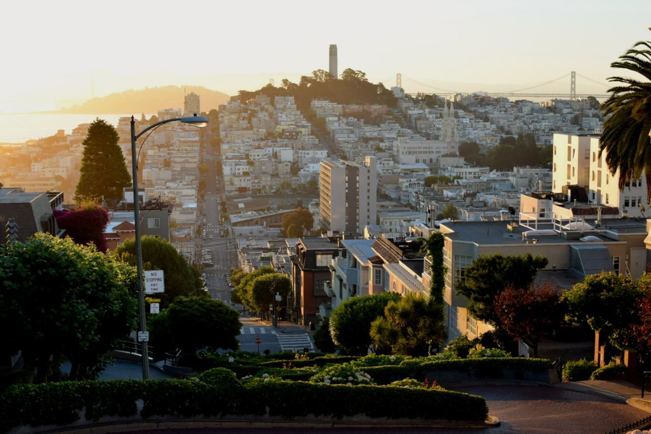 Tree Cityscape Travel Destinations Architecture City No People Vacations Outdoors Urban Skyline Day Sky Road Sunlight Dawn Beauty In Nature NIKON D5300 San Francisco San Francisco, California Sunrise Sunrise Porn Sunrise_Collection Lombard Street