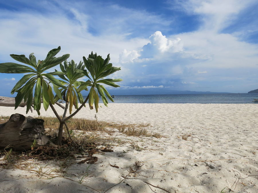 EyeEm Selects Beach Sand Sea Cloud - Sky Tranquility Sky Landscape Outdoors Nature Scenics Day Water Beauty In Nature EyeEmNewHere Camiguin Camiguinisland Camiguin Philippines MantigueIsland Mantigue Island Mantigueislandcamiguin