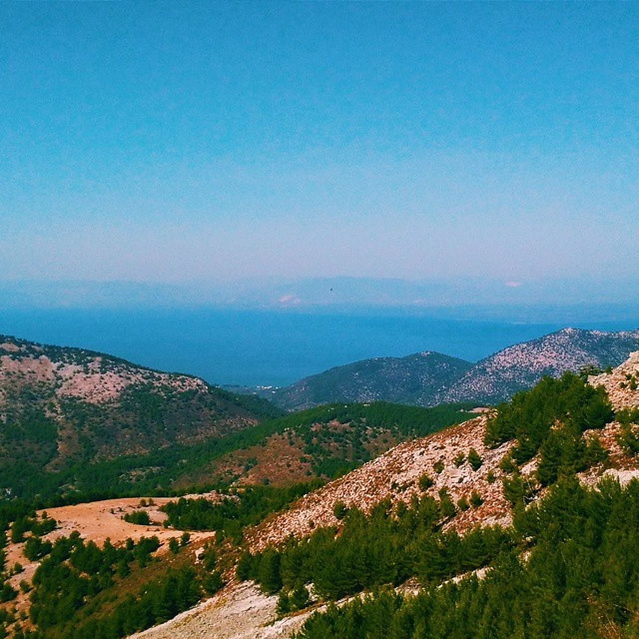 Greece is not all about the sea. It's also about the mountains and I got to be on top of them both. Thassos Thassosisland Greece Greecestagram Igersgreece Ig_europe Ig_world Ig_greece Lifeofadventure Liveauthentic Latergram Natgeotravel Cntraveler Amazing September Widenyourworld Wildlife Ethnic Everydayinpics Enjoythesun Travelgram Thephotosociety Tedooro Beautifuldestinations Vscogrid vsco vscocam vscopure