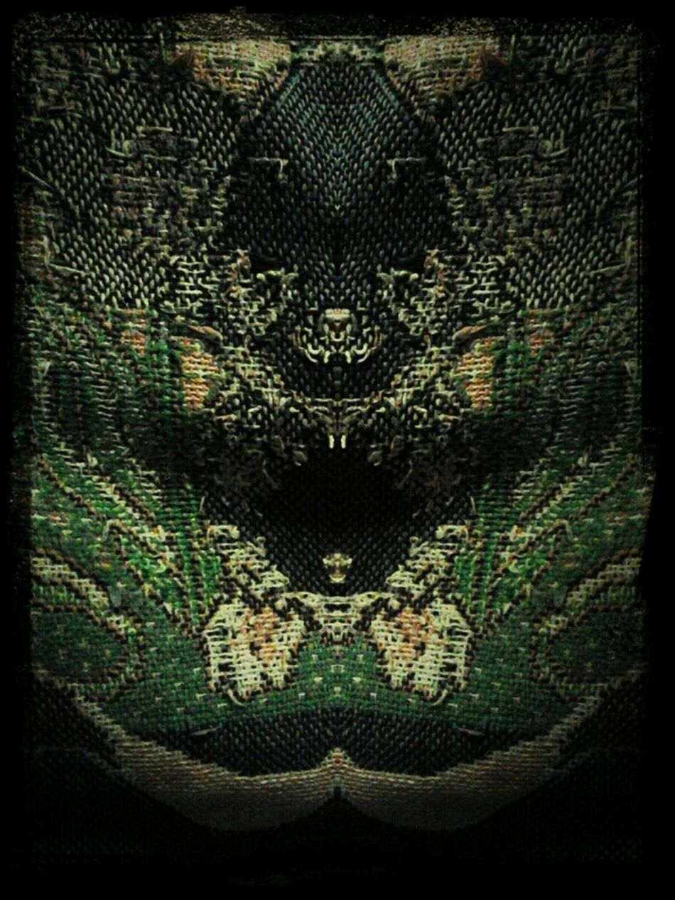 What Do You See When You Look