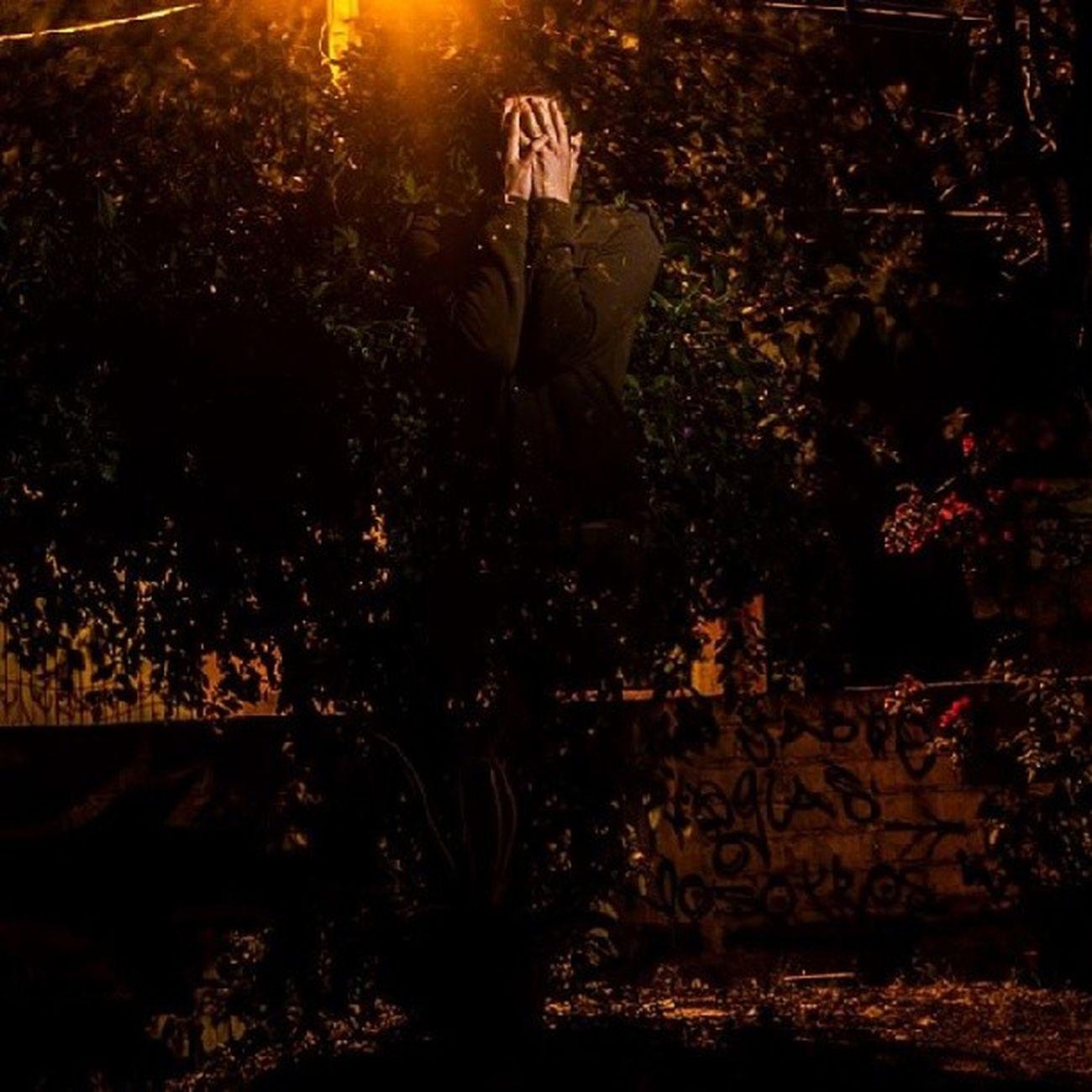 95/365 Ahfotografia 365project ByAlexHernández MyArt