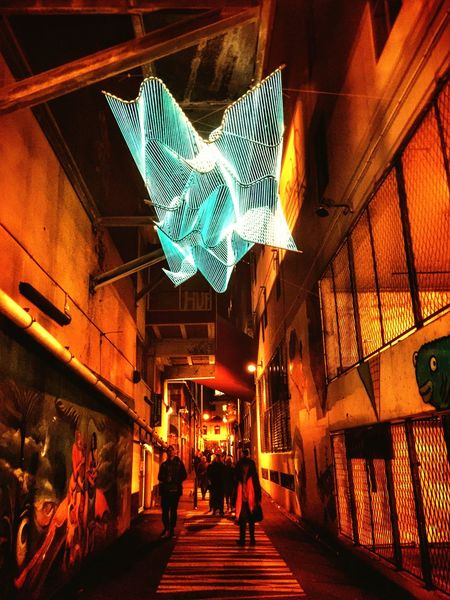 3D light stretch, light festival at wellington new zealand, street art Architecture Built Structure Illuminated Building Exterior Night Real People Indoors  Neon