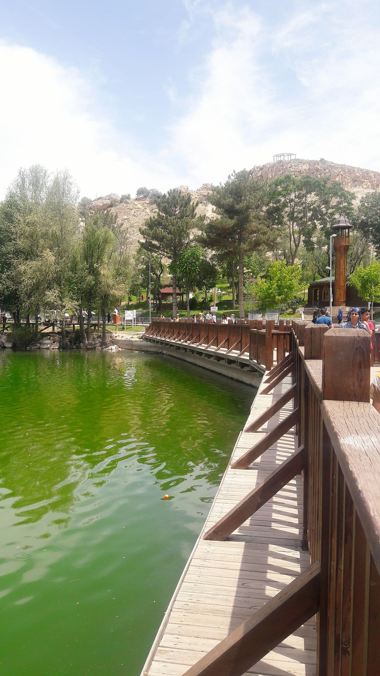 Malatya Turgutözal Parkı Köprüde Dogal Yeşil Doğa Yesili Taking Photos Balık Kaynağı Trippy!