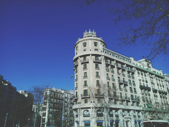Barcelona Building Sunshining Bluesky Tree Windows