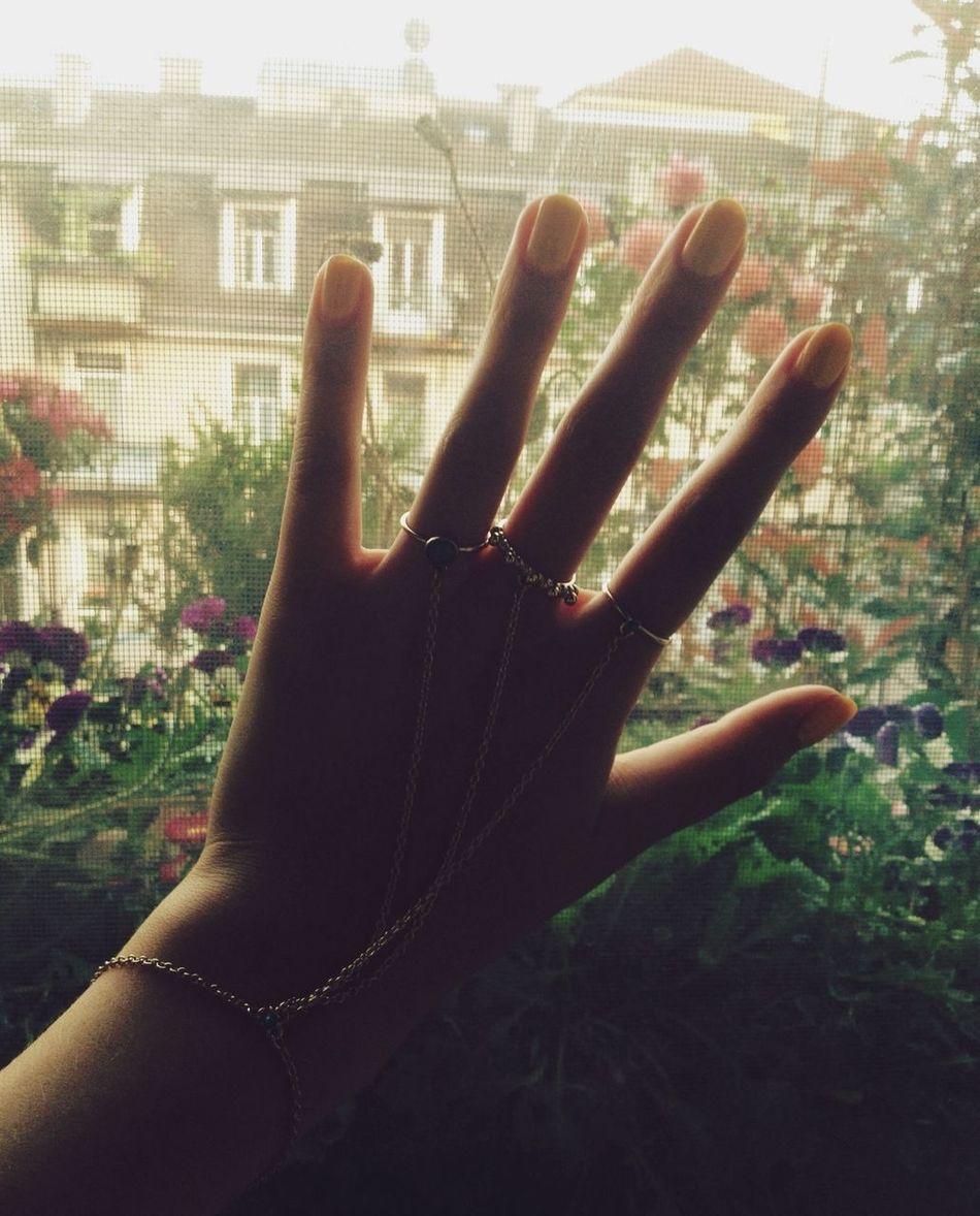 Hands, Dreamy Flowers ? Hello World