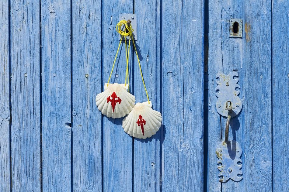 Beautiful stock photos of nail, Animal Shell, Blue, Cross, Cultures