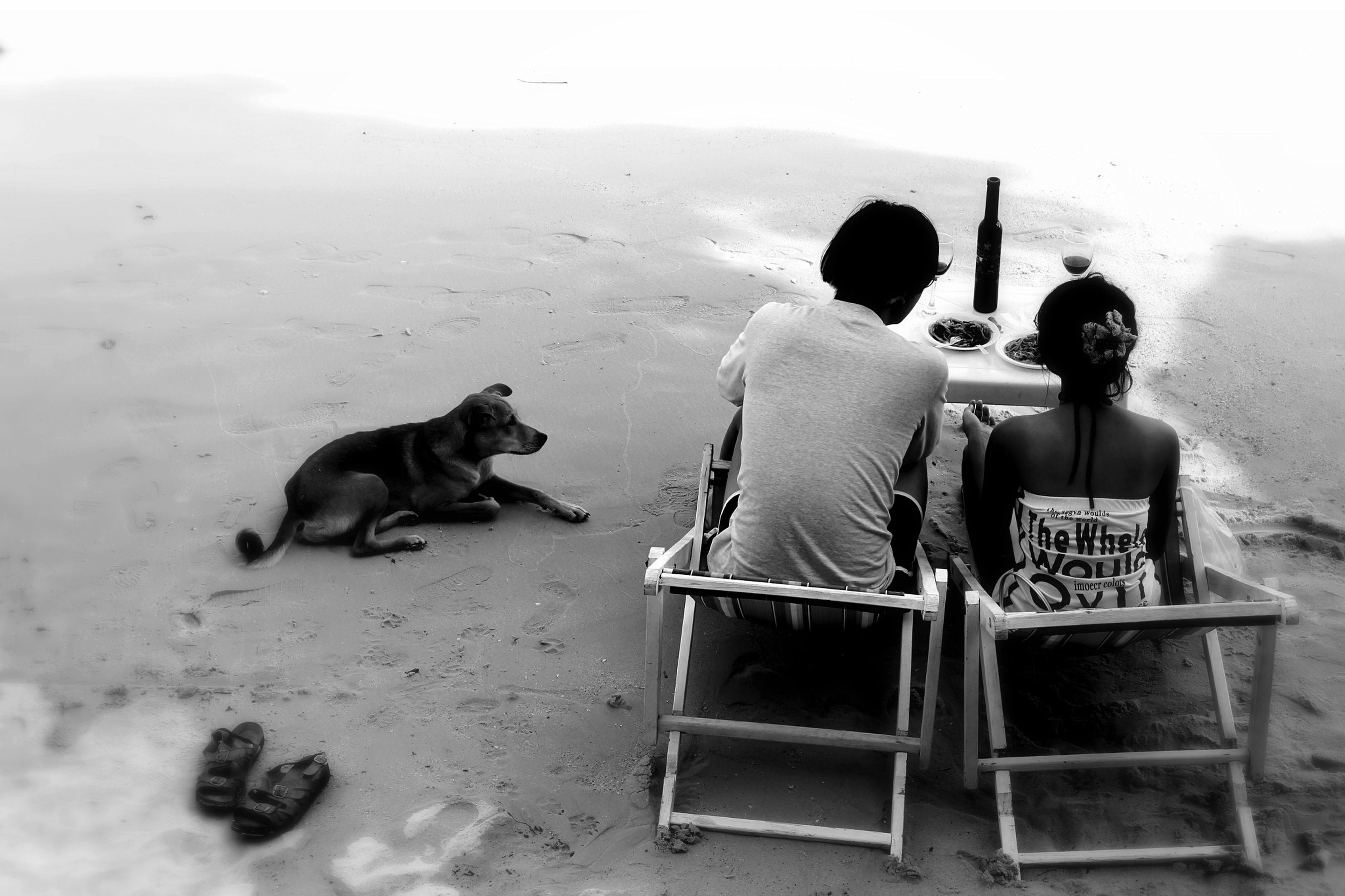 togetherness, bonding, domestic animals, sitting, mammal, pets, lifestyles, animal themes, full length, leisure activity, love, relaxation, friendship, men, rear view, person, casual clothing, dog
