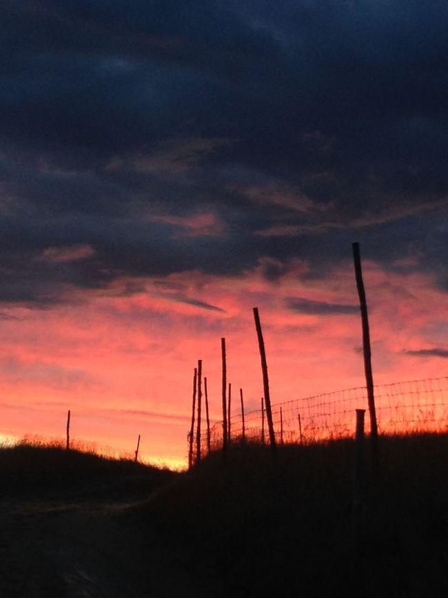 Hello darkness, my old friend... Sunrise Sky Lover