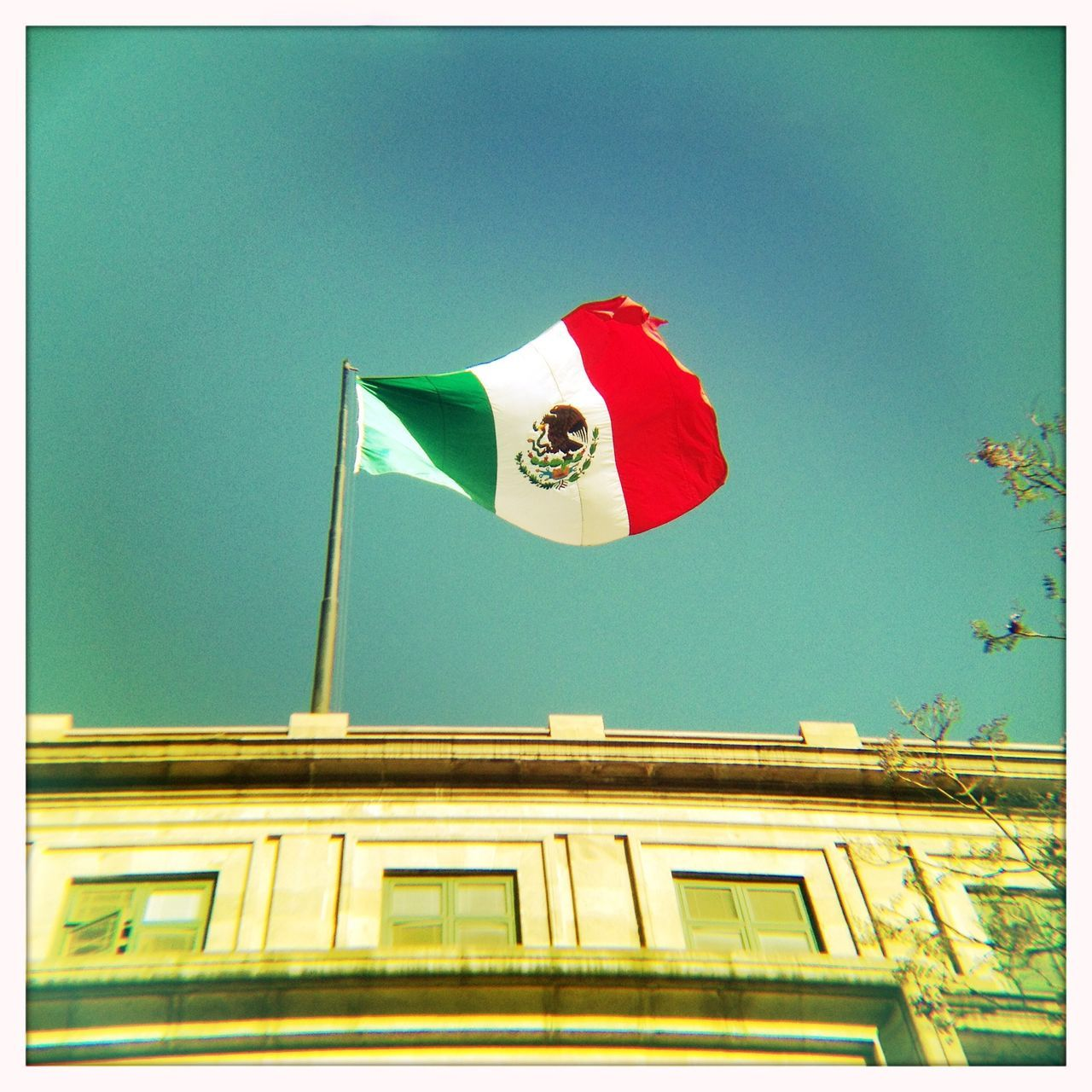 Beautiful stock photos of mexican flag, Animal Representation, Architecture, Auto Post Production Filter, Blue