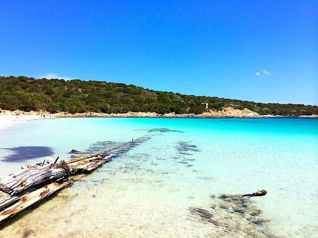 Cristal Water Sea And Sky Sea Life Happiness Wanderlust