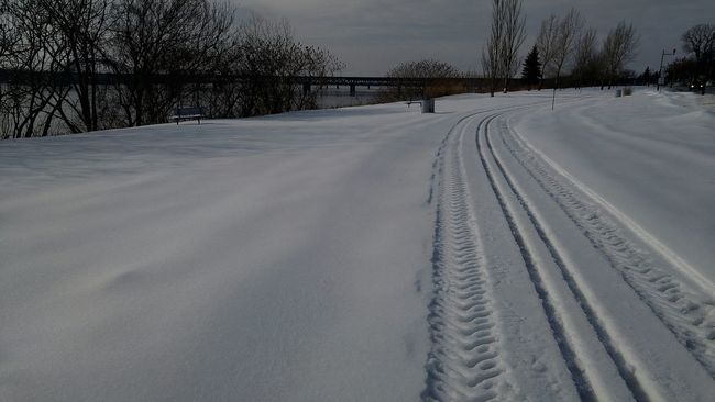 Winter Wintertime Snow Path Pathway Tire Path In The Snow Winterscapes Cold
