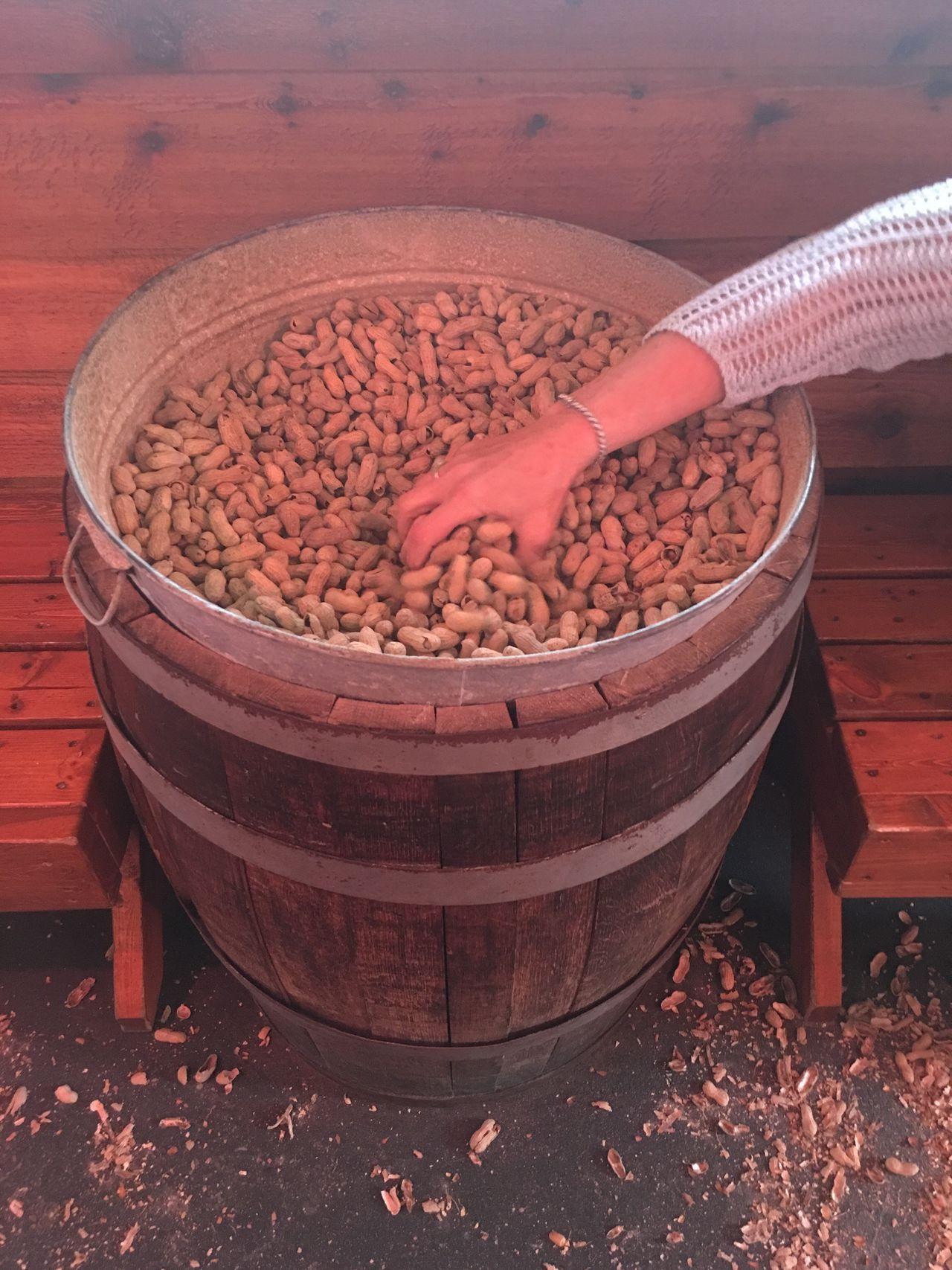 Grabbing Grabbing A Bite Reaching Arm Hand Barrel Peanuts Indoors  Day