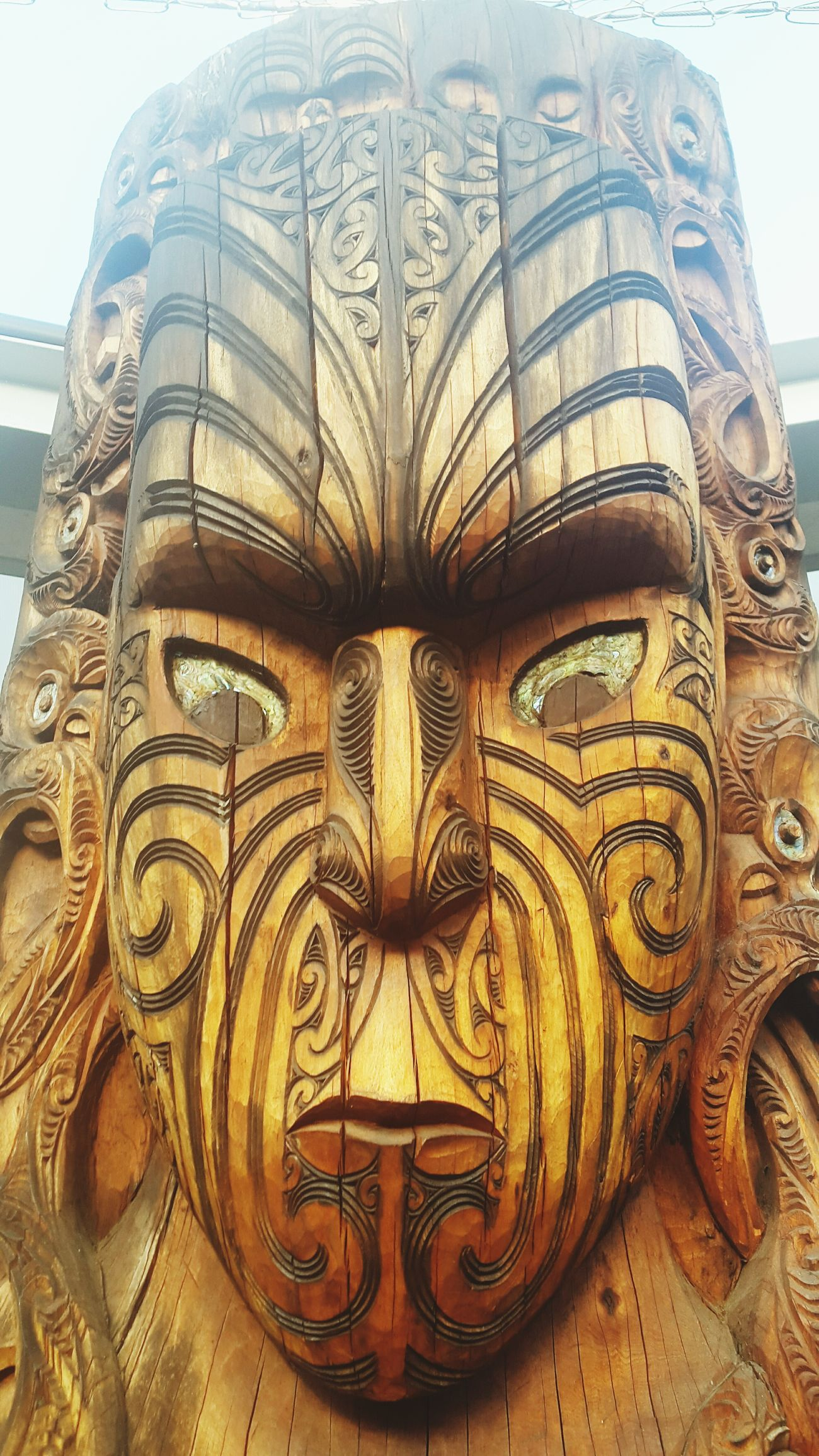 Mauriora Rotorua N.Z
