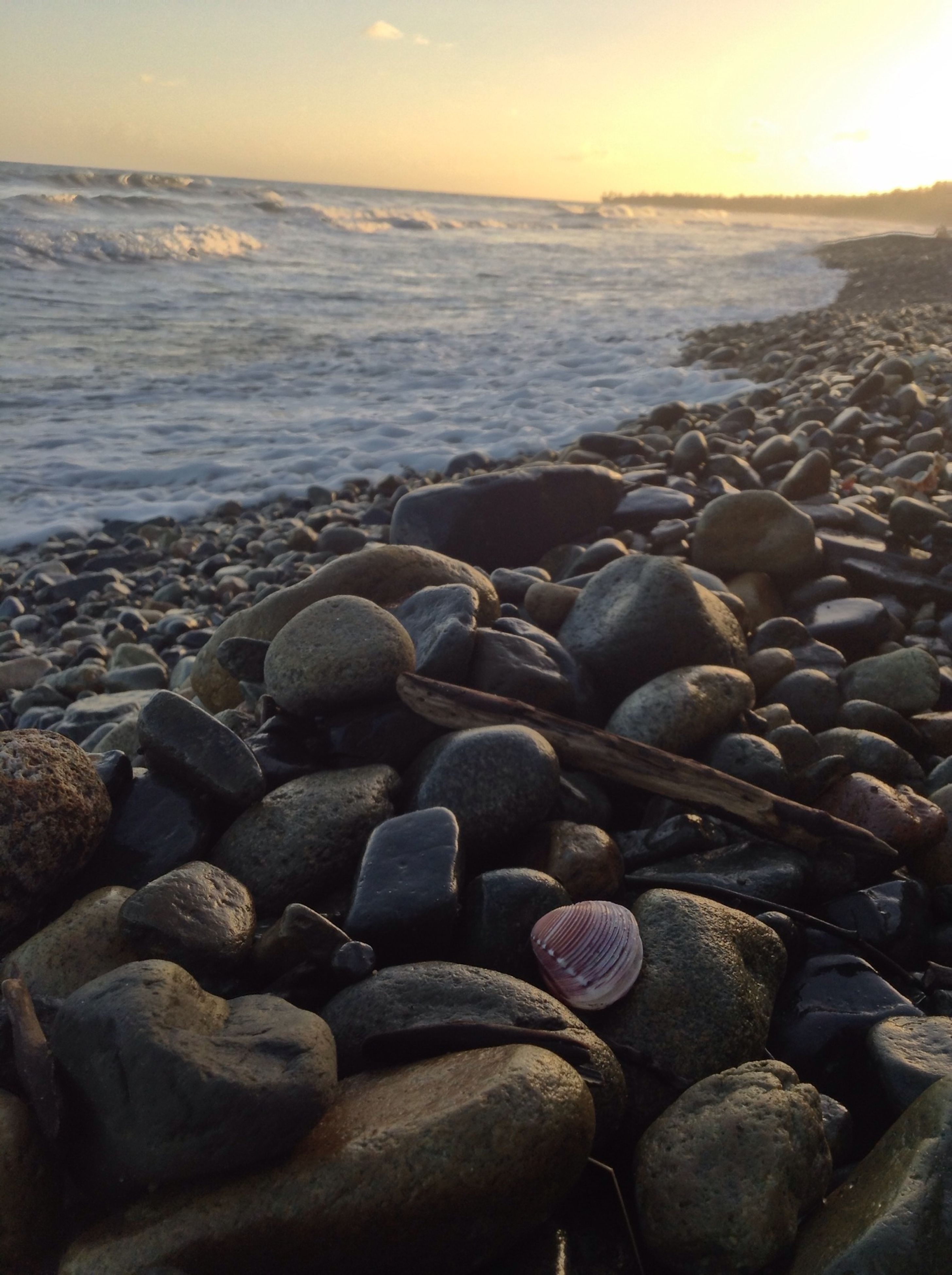 sea, beach, water, shore, horizon over water, pebble, scenics, tranquility, tranquil scene, beauty in nature, rock - object, stone - object, nature, sky, idyllic, stone, sunset, outdoors, wave, sunlight