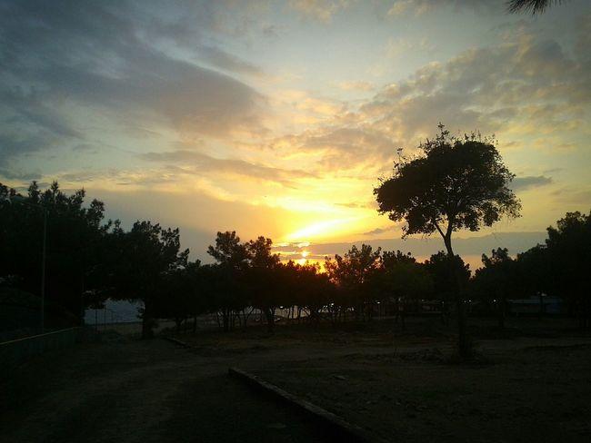 Taking Photos Sunset Sunset Silhouettes Nature Nature Photography Slihouettes