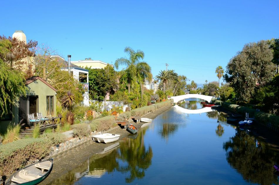 Blue Sky Boats Bridge Outdoors Palm Trees Reflections Standing Water Trip Venice Venice Canals, CA Water