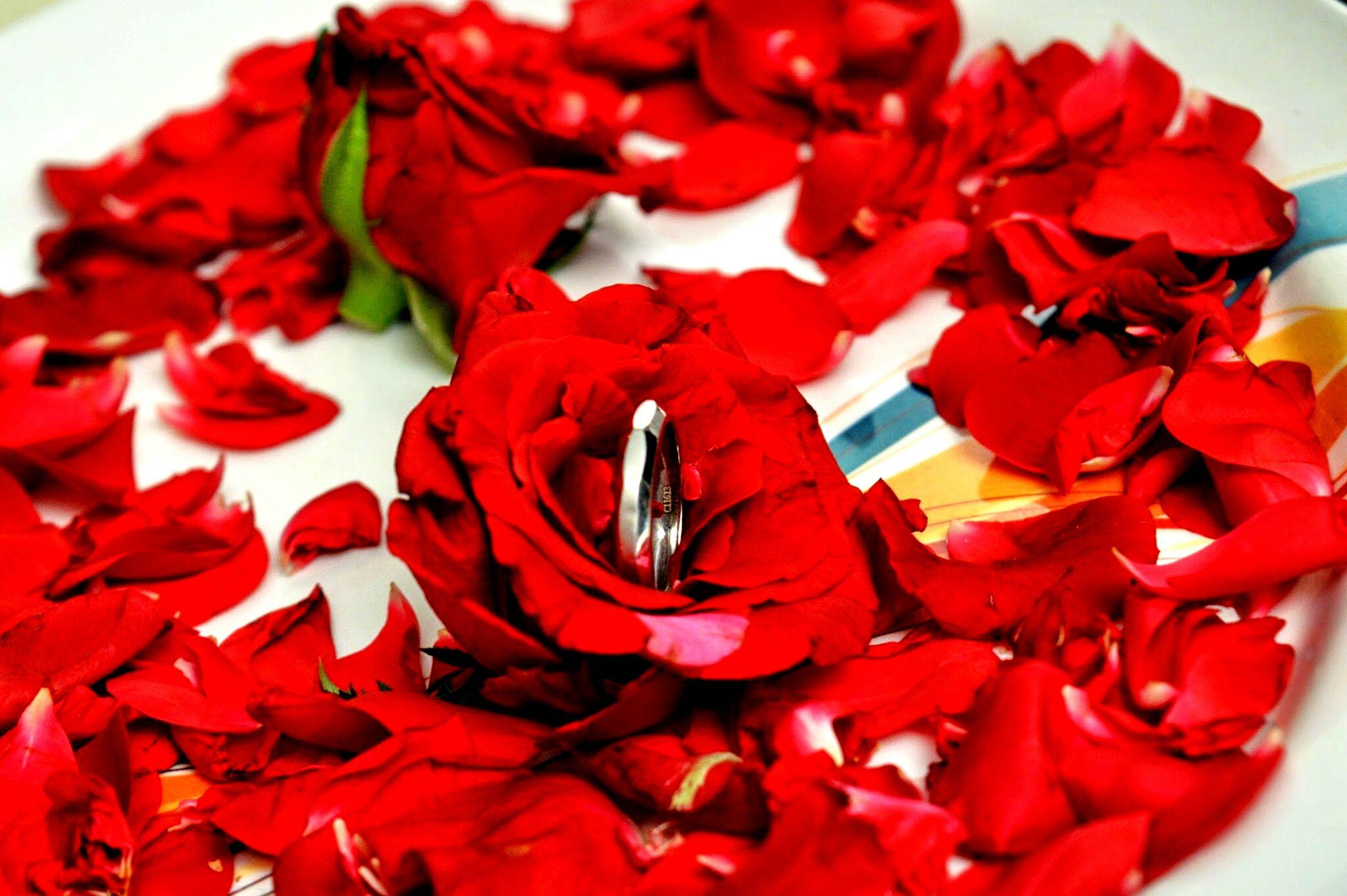 FifthEyeemphoto Love ♥ Wedding Photography Sangeetsandhya Engagement Photography Engagement Ring