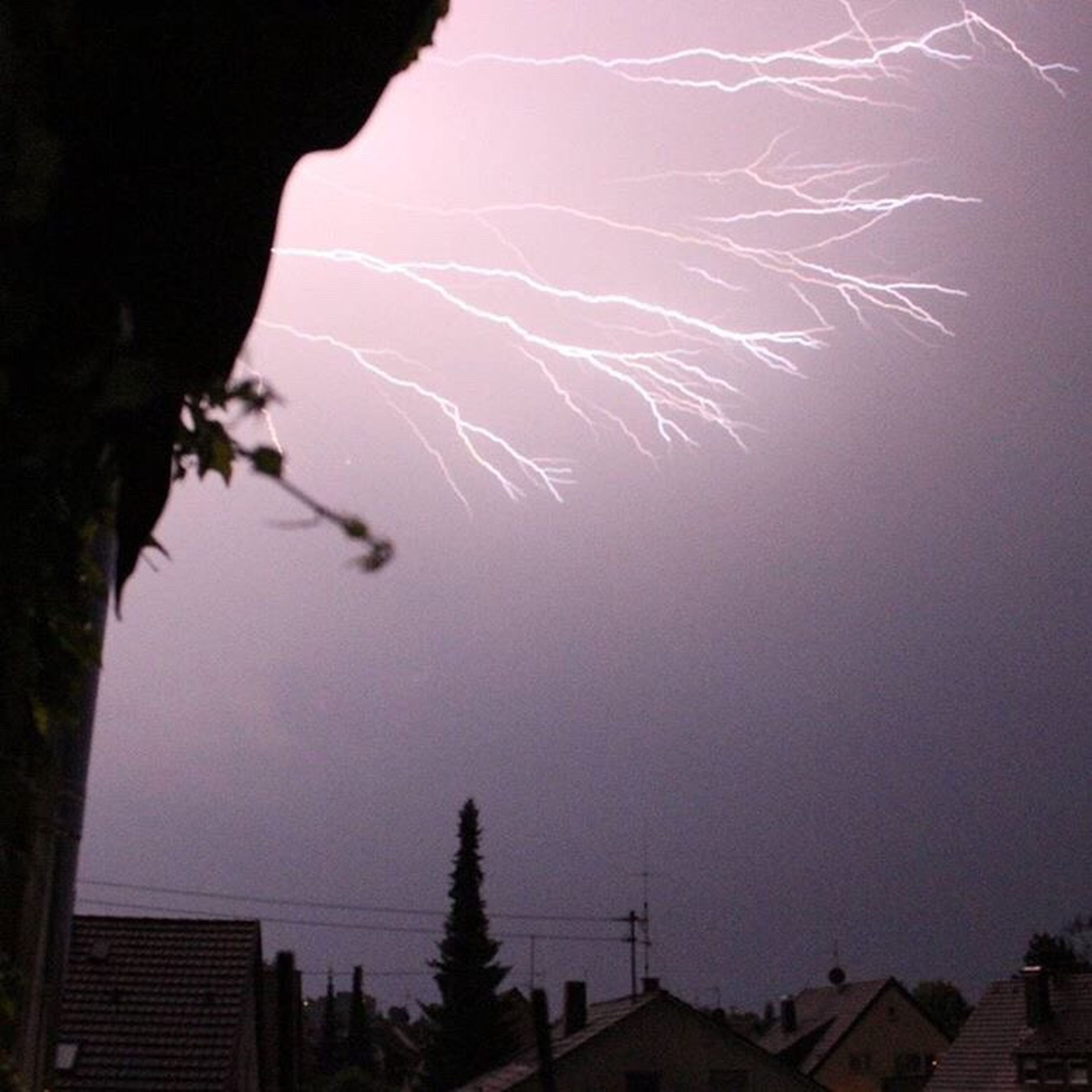 lightning, sky, no people, thunderstorm, storm, night, tree, outdoors, nature, beauty in nature, power in nature, forked lightning