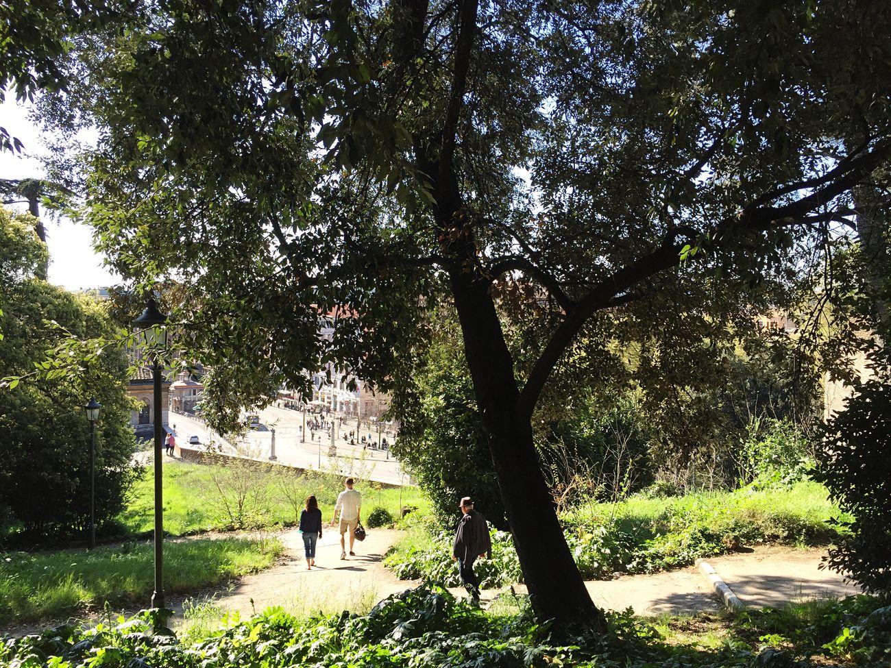 Photography People Photo Urbanphotography City Iphonephotography Iphonephoto Hi! Taking Photos Rome Trees Moments Scatti_italiani Fotografia PhonePhotography Foto Pincio Sunny Day