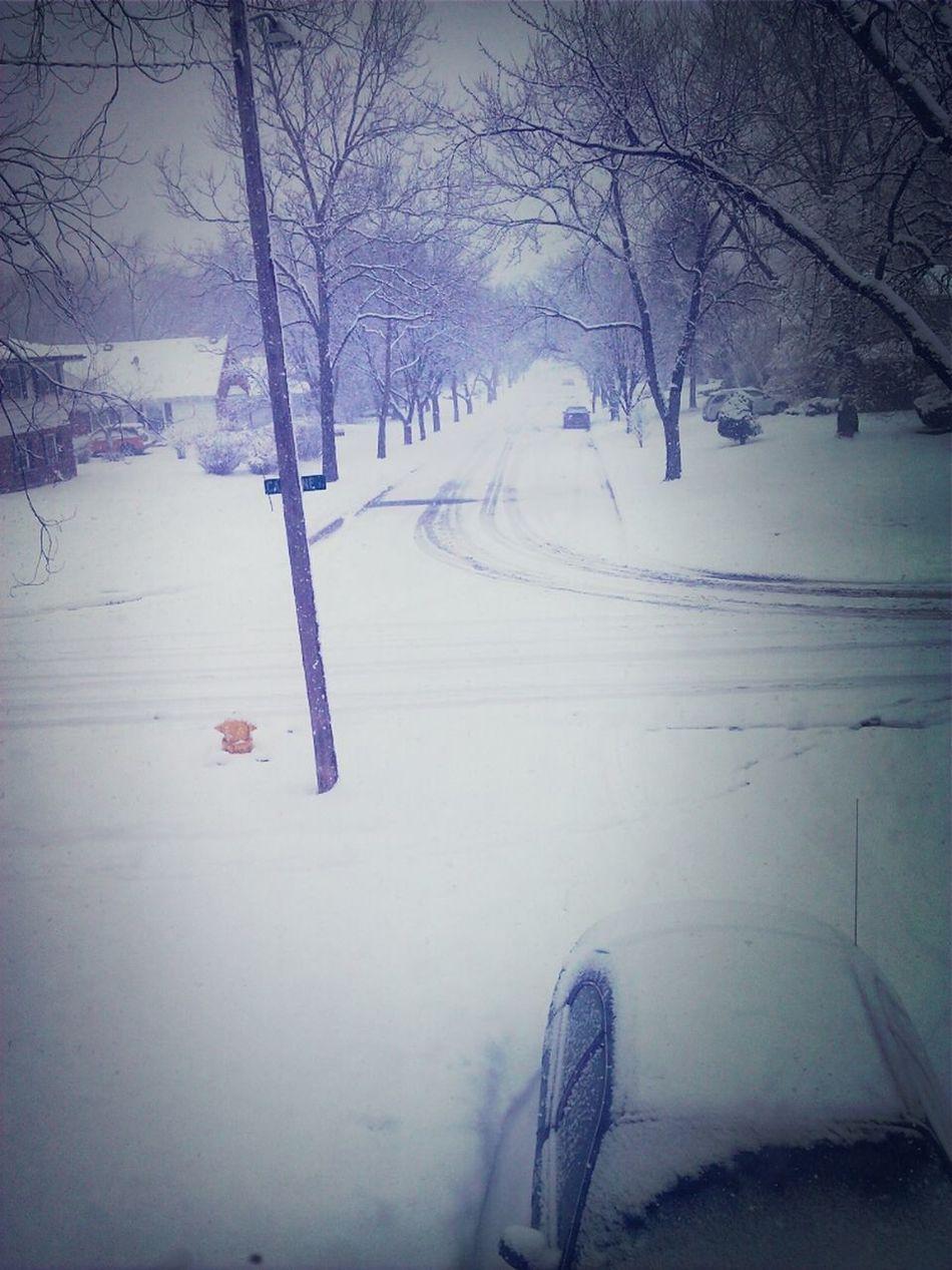 SnowyDays