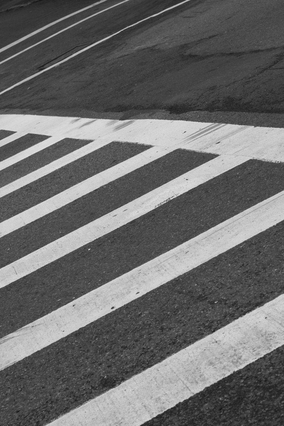 Beautiful stock photos of zebra, Caution, Choice, City, Context