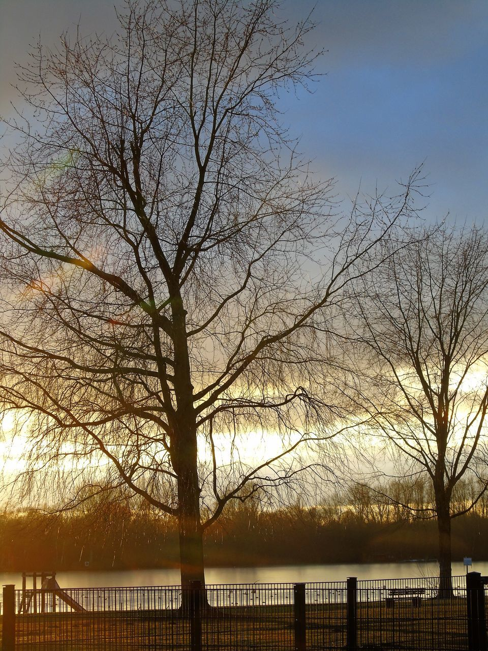 bare tree, tree, branch, outdoors, nature, no people, tranquility, river, beauty in nature, water, winter, scenics, day, sky