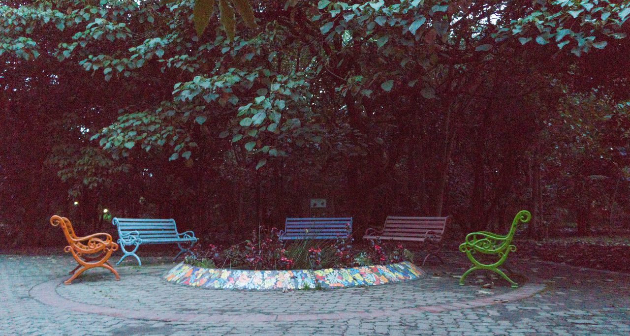 absence, chair, tree, empty, no people, outdoors, day, seat, nature