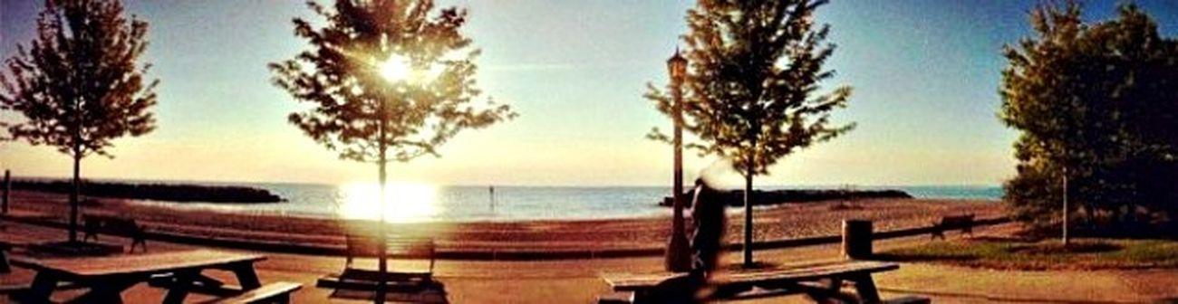 Amanecer Sun Lake Bluff Trees