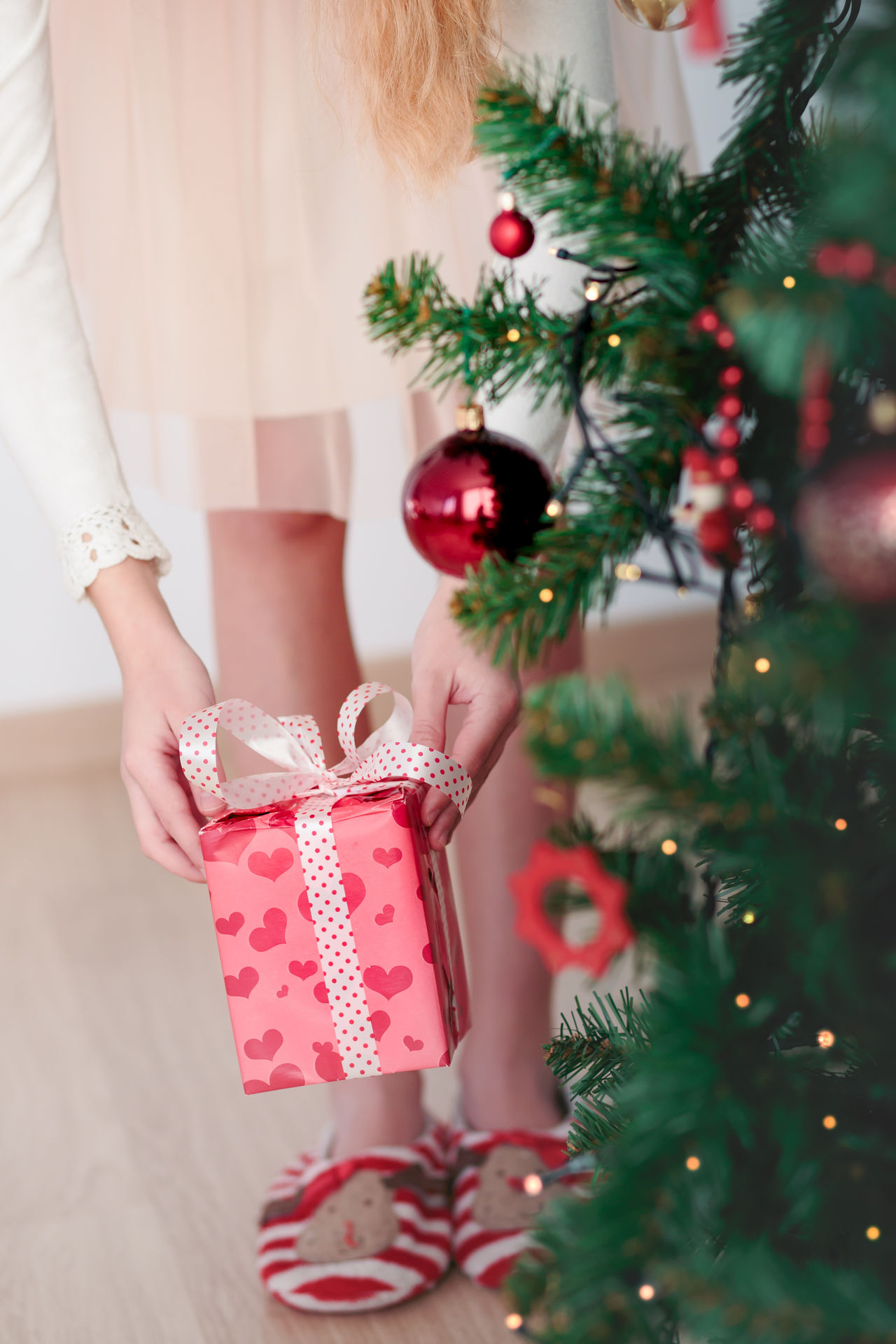 Closeup of girl getting Christmas gift from under a tree Celebrating Celebration Child Childhood Christmas Christmastime Decorated Dress Gift Girl Holding Holiday Home Light Person Present Red Tree Vertical Wrapped Young