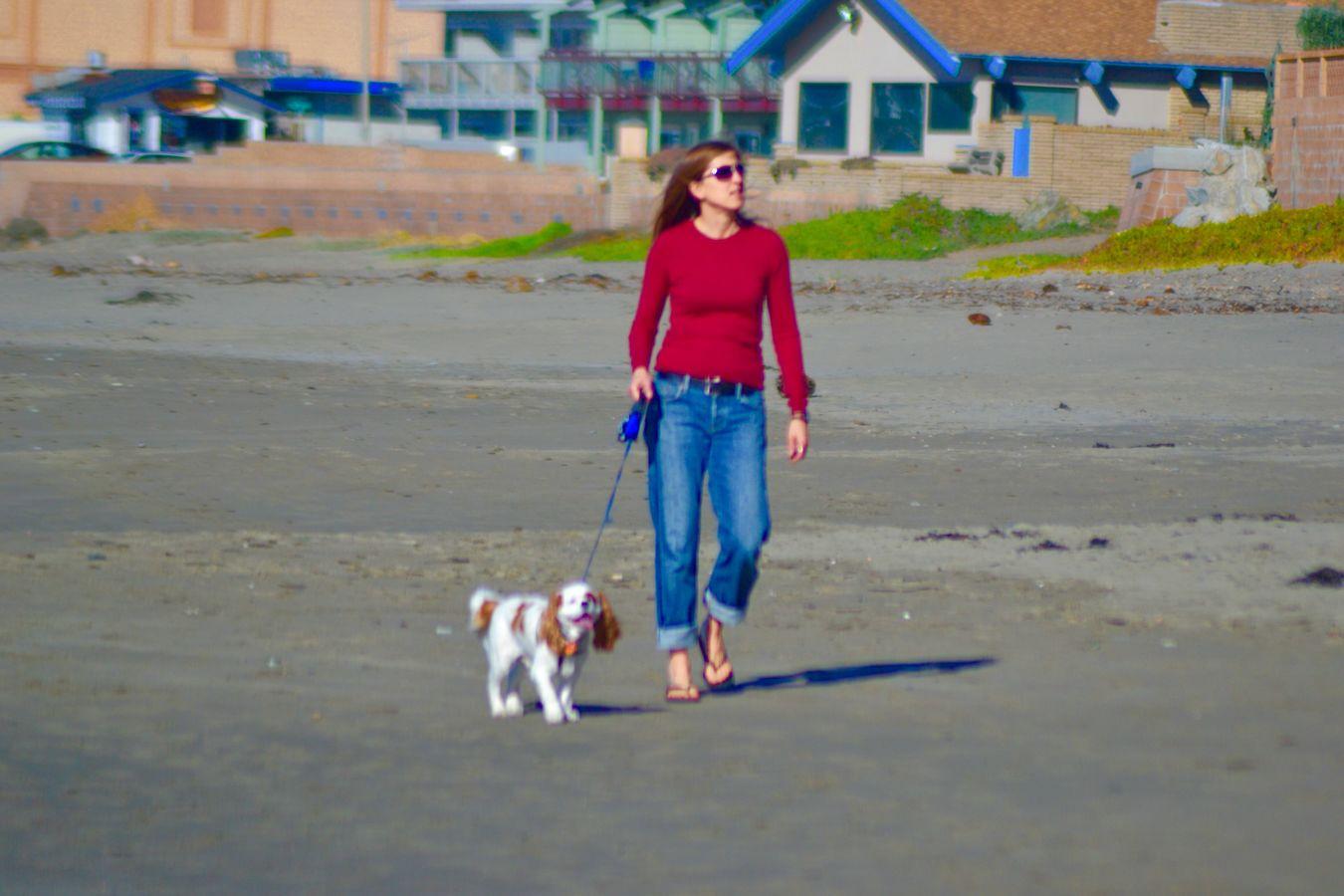Beach Photography Life Is A Beach Cayucos