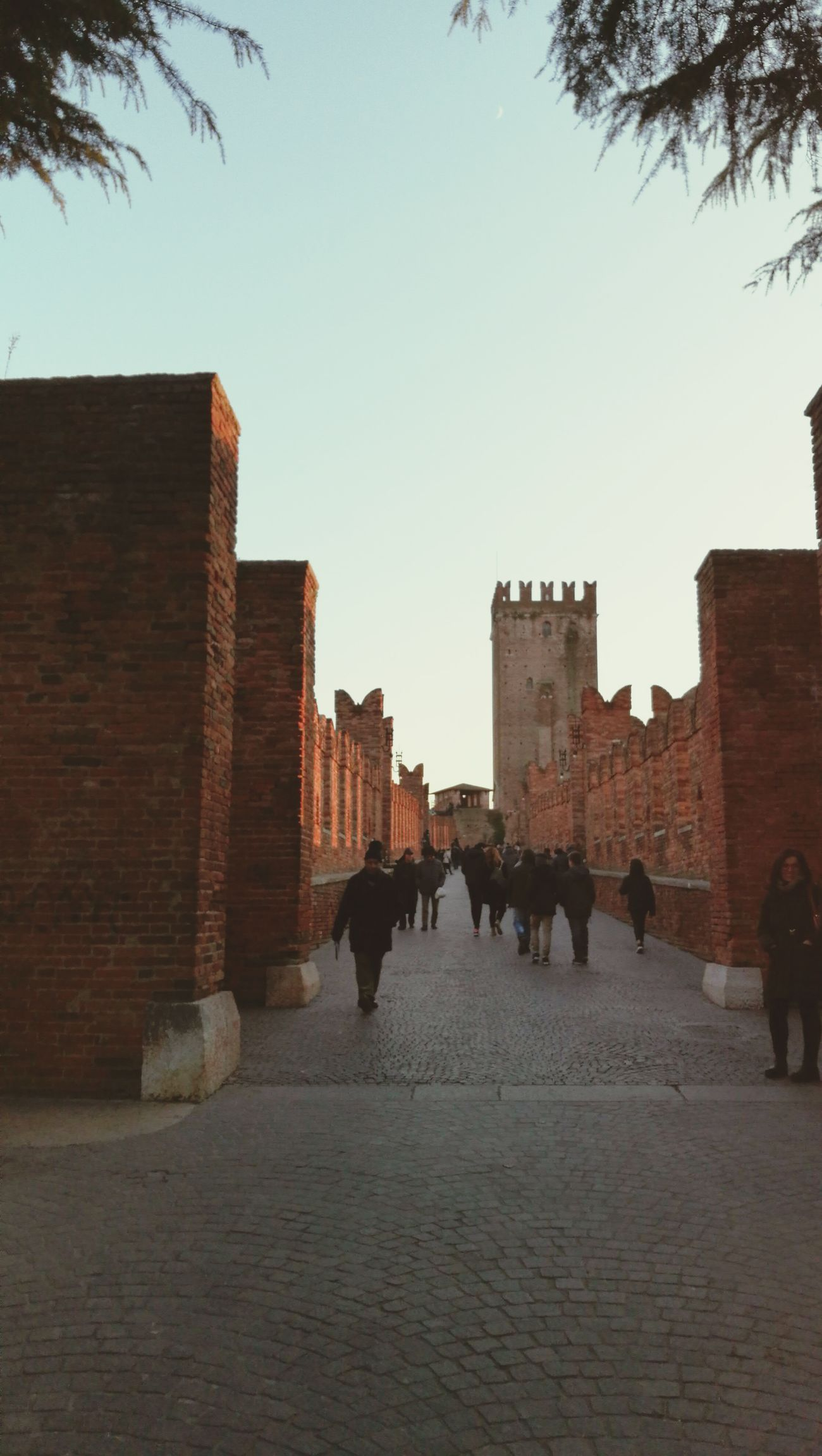 Verona Architecture City Day People Sky Torre Holiday History Building Exterior Outdoors Large Group Of People NewYear2017