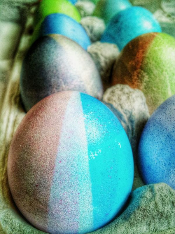 Colored Easter eggs in carton Easter Eggs Easter EyeEm Best Shots Happy Easter Holiday Color Eye4photography  EyeEmBestPics Color Photography Easteregg Easter Decoration Coloring Eggs Easter Ready Eggshell Easter Egg Colored Eggs Colored Egg Editorial Photography Food Coloringeggs Closeup Close Up Close-up Eggs... Food And Drink