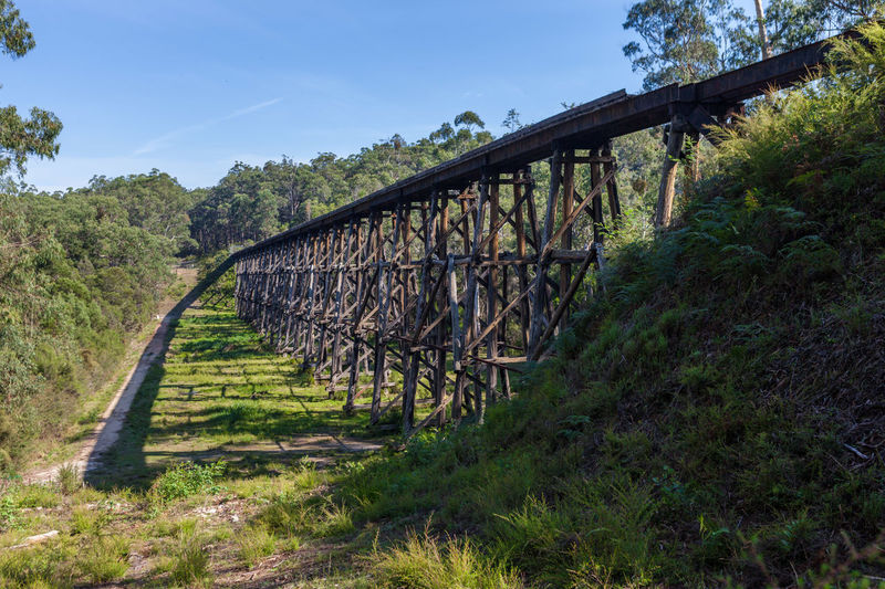 The Stony Creek Vintage Trestle Bridge. Old railroad bridge, Victoria, Australia Australia Australian Landscape Beautiful Landscape_Collection Architecture Bridge Bridge - Man Made Structure Built Structure Clear Sky Connection Day Forest Grass Growth Landscape Mountain Nature No People Outdoors Rail Railway Sky Tree Trestle Bridge Vintage Bridge