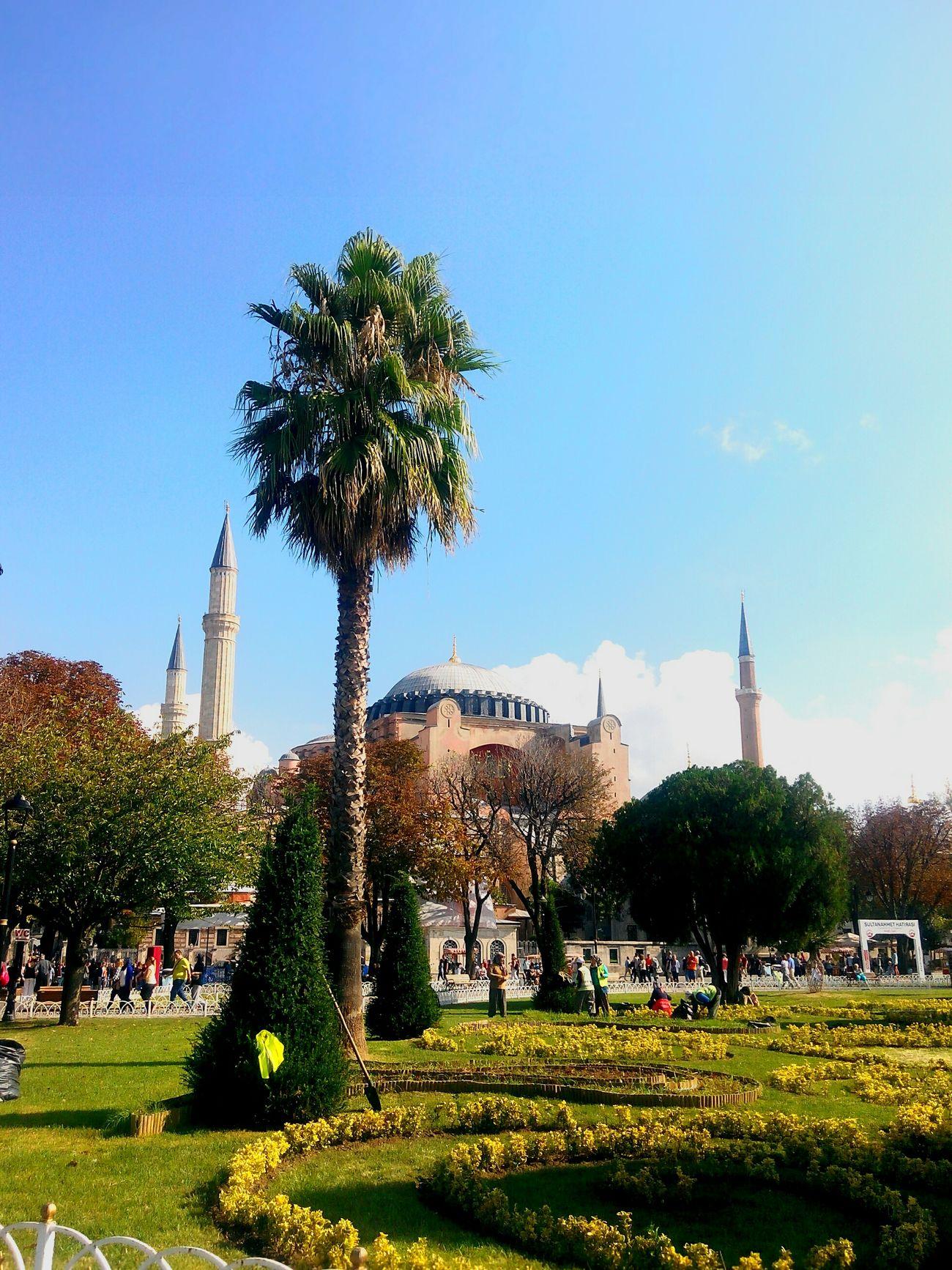 Ayasofyacamii Tarihi Camii Historycal Place Istanbul Turkiye Tarihimekan Garden Park Green Green Green!
