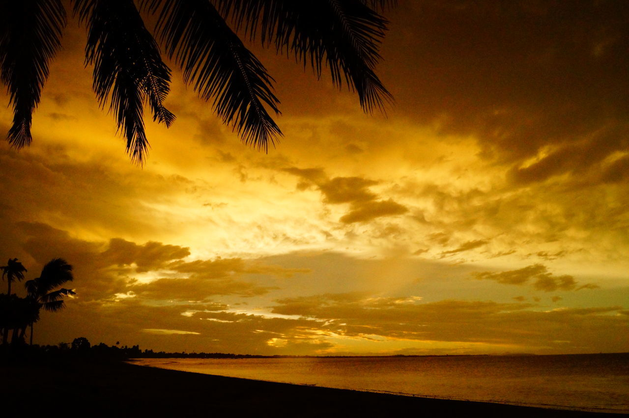 Beach Beauty In Nature Dramatic Sky Fiji Fiji Islands Nature Outdoors Palm Tree Silhouette Scenics Sea Silhouette Sky Sunset Sunset Silhouettes Tranquil Scene Tranquility Water